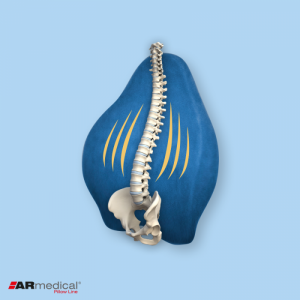 Подушка ортопедическая под спину Exclusive Support