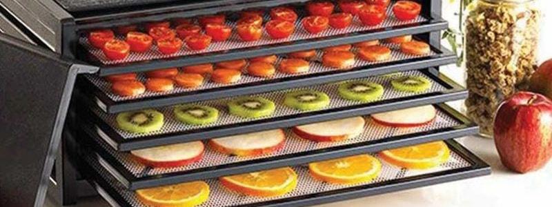 Как выбрать сушилку для фруктов и овощей